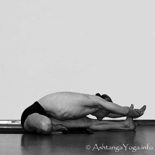 Janu Sirsasana Asana sequence with pi...