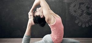 Yoga für Fortgeschrittene - Dr. Ronald Steiner / Anna Trökes