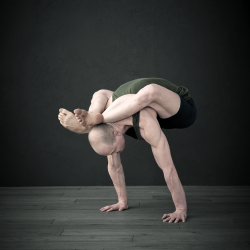 Die Schatzkammer des Yoga